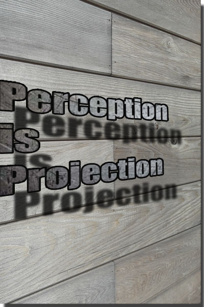 Perception is Projection.