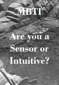 Sensing or Intuitive - MBTI