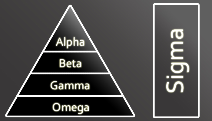 Hierarchy and the Sigma male.
